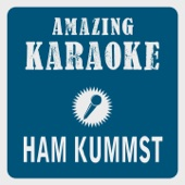 Ham kummst (Karaoke Version) [Originally Performed By Seiler und Speer]