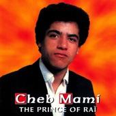 The Prince of Raï