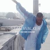 Stan Walker - You Never Know artwork