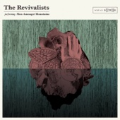 Wish I Knew You - The Revivalists Cover Art