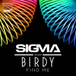 Find Me (feat. Birdy) [Radio Edit] - Single