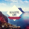 Beautiful Life (feat. Sandro Cavazza) [Gareth Emery Remix] - Single
