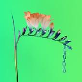 Skin Companion EP I, Flume