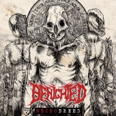 Necrobreed (Deluxe) - Benighted Cover Art