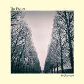 In Between - The Feelies Cover Art