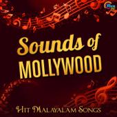 [Download] Neeyoru Vasanthamay (From