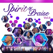 Spirit of Praise, Vol. 6 (Live)