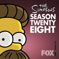 The Simpsons, Season 28 (iTunes)