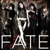 FATE - Mary's Blood