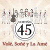 Volé, Soñé Y La Amé - Single