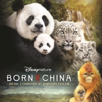 Born In China - Official Soundtrack