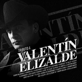 Tributo A Valentín Elizalde – Varios Artistas