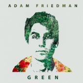 What If - Adam Friedman