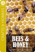 Crafts and Hobbies : Bees and Honey