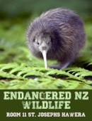 Endangered NZ Wildlife