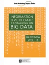INFORMATION OVERLOAD Capitalizing On Big Data