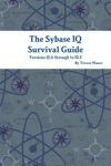 The Sybase IQ Survival Guide