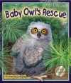 Baby Owls Rescue