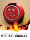 Please Dont Remain Calm Provocations And Commentaries