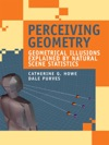 Perceiving Geometry
