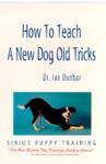 How To Teach A New Dog Old Tricks