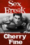 Sex Break