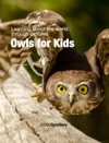Owls For Kids