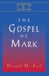 Interpreting Biblical Texts Series - Gospel Of Mark