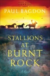 Stallions At Burnt Rock