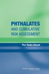 Phthalates And Cumulative Risk Assessment