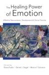 The Healing Power Of Emotion Affective Neuroscience Development  Clinical Practice