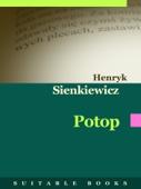 Henryk Sienkiewicz - Potop artwork