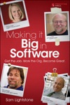 Making It Big In Software Get The Job Work The Org Become Great