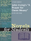 A Study Guide For John Irvings A Prayer For Owen Meany
