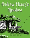 Andrew Henrys Meadow