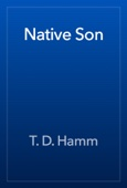 T. D. Hamm - Native Son artwork