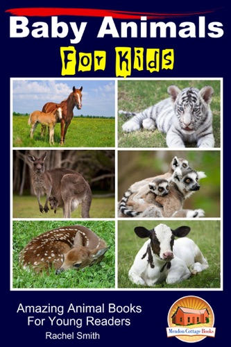 Baby Animals For Kids Amazing Animal Books For Young Readers
