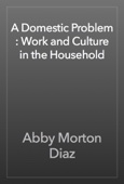 Abby Morton Diaz - A Domestic Problem : Work and Culture in the Household artwork
