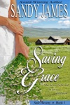 Saving Grace Safe Havens 1