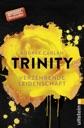 Trinity - Verzehrende Leidenschaft von Audrey Carlan
