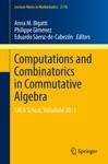 Computations And Combinatorics In Commutative Algebra