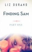 Liz Durano - Finding Sam - Part One  artwork