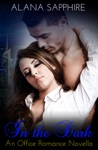 In The Dark An Office Romance Novella