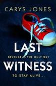 Carys Jones - Last Witness artwork