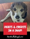 MOOKIETHEBEAGLECOM DEBITS AND CREDITS IN A SNAP