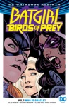 Batgirl And The Birds Of Prey Vol 1 Who Is Oracle