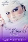 The New Princess