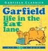 Garfield Life In The Fat Lane
