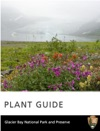 Plant Guide Glacier Bay National Park And Reserve