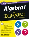 Algebra I 1001 Practice Problems For Dummies  Free Online Practice